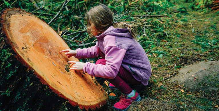 A young girl in a fleece hoodie examines a tree stump.