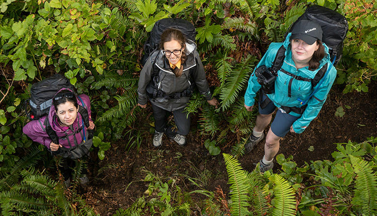 She Explores, three female hikers in a rain forest.