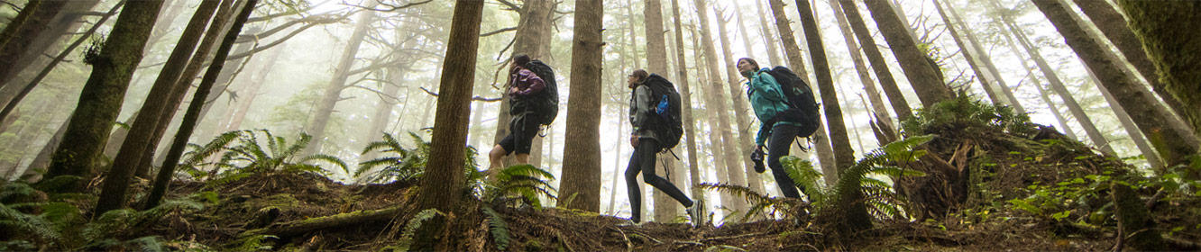 "Video screenshot of three women in Columbia gear hiking through a forest. Links to the ""Offline"" video documenting their journey."