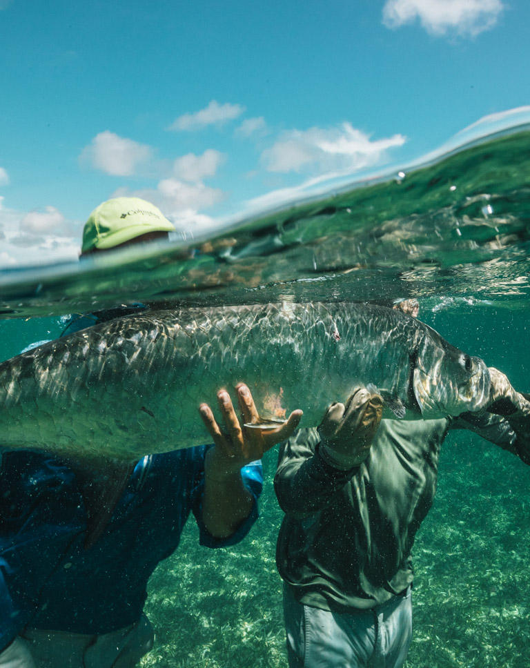 Bi-level (underwater and above water) view of Badfish TV's Dylan Schmitz and Marty Gillipeau holding the prized tarpon they caught.