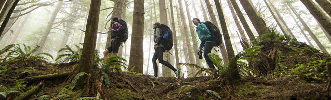 She Explores Offline campaign featuring three women hiking in the forest