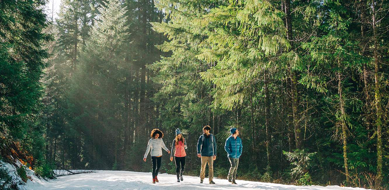 Four young people in casual outdoor wear walk on a snowy road in a sunlit forest.