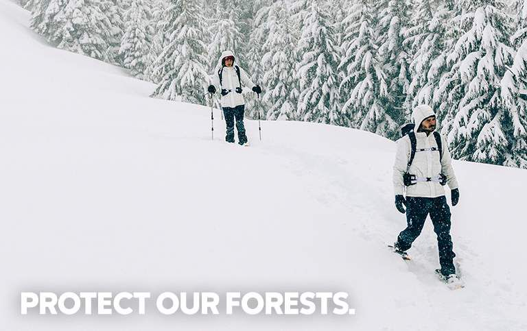 protect our forests