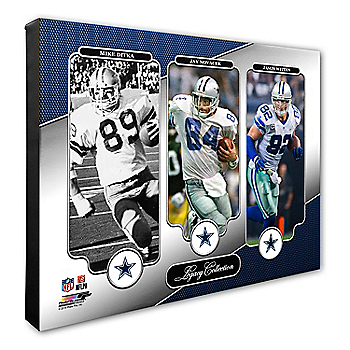Dallas Cowboys 16x20 Ditka/Novacek/Witten Canvas