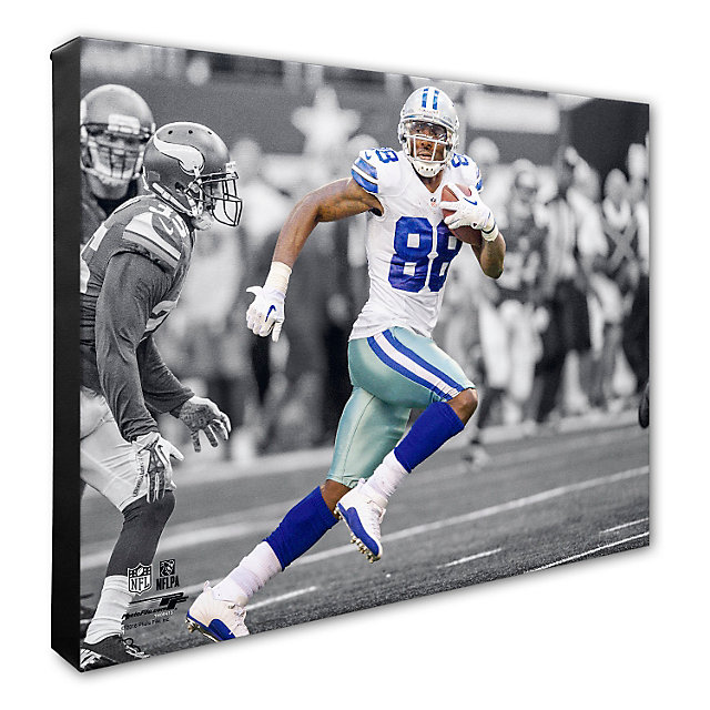 Dallas Cowboys 16 x 20 Dez Bryant Action Canvas