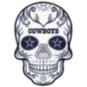 Dallas Cowboys Outdoor Skull Graphic