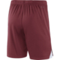 Arkansas Razorbacks Nike Knit Short