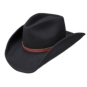 Dallas Cowboys Stetson The Tribute Hat