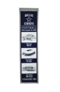 Dallas Cowboys Stadium Evolution Banner