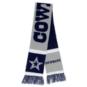 Dallas Cowboys Mens Reversible Big Logo Scarf