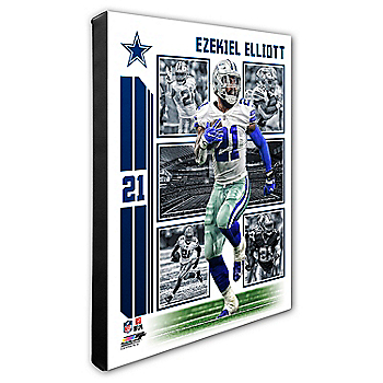 Dallas Cowboys 16x20 Ezekiel Elliott Collage Canvas