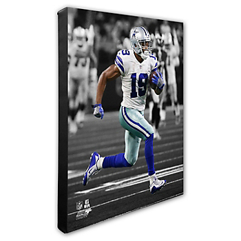 Dallas Cowboys 16x20 Amari Cooper Action Canvas