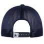 Dallas Cowboys Mens Linseed Snapback Hat