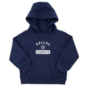 Dallas Cowboys Toddler Banner Fleece Pullover Hoodie