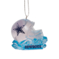 Dallas Cowboys Ice Sculpture Ornament