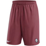 Arkansas Razorbacks Nike Shield Shorts