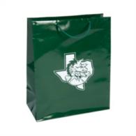 Southlake Carroll Dragons Emerald Gift Bag