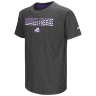 TCU Horned Frogs Colosseum Youth Hat Trick Tee