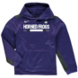TCU Horned Frogs Nike Youth Therma-FIT Hoody