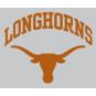 Texas Longhorns 8x8 Arched Logo Decal