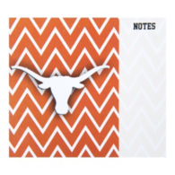 Texas Longhorns Mouse Notes