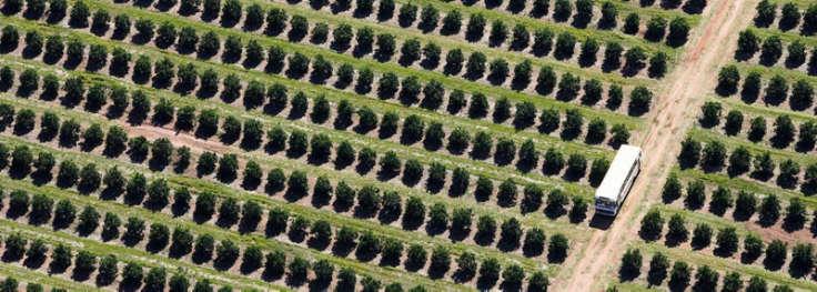 FarmLead Boosts Customer Revenues Over 5%