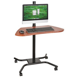 Mobile Computer Workstation, E10021