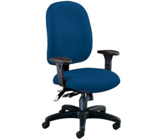 Ergonomic Task Chair, C80077