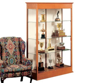 Display Case with Fabric Backing, B32114