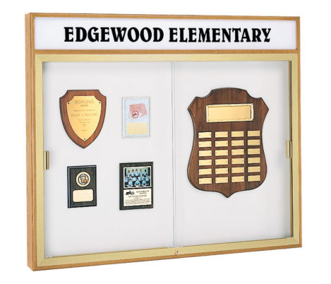 Trophy Wall Display Case With Header 50 Wide X 42 High