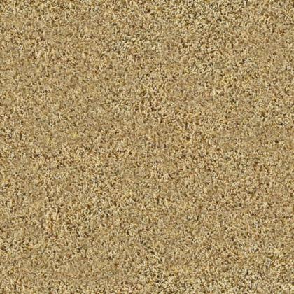 Stainmaster Bravado Fleck 15 Buttered Rum Carpet