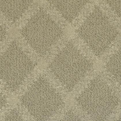 Stainmaster Belcourt 809 Carpet