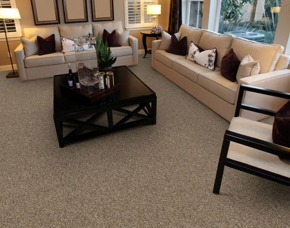 Stainmaster Amore 25220 Suede
