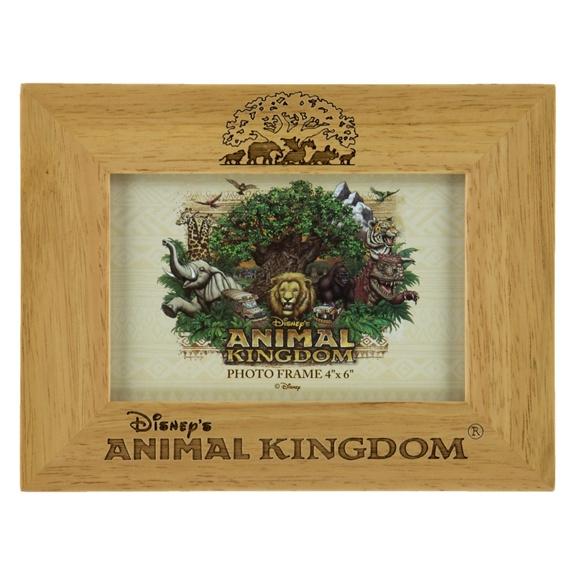 disneys animal kingdom 4x6 photo frame - Disney World Picture Frames