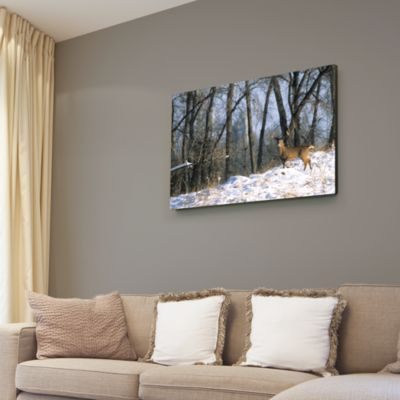 Deer in the Woods Canvas