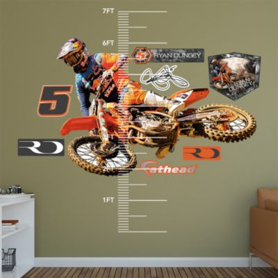 action sports wall decal