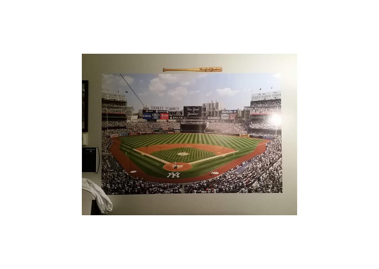 Behind Home Plate At Yankee Stadium Mural Wall Decal
