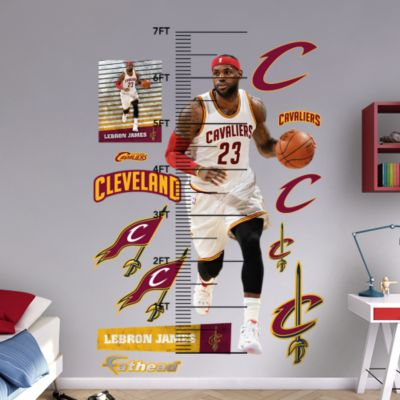 Assorted Sports Ball Graphics Fathead Wall Decal