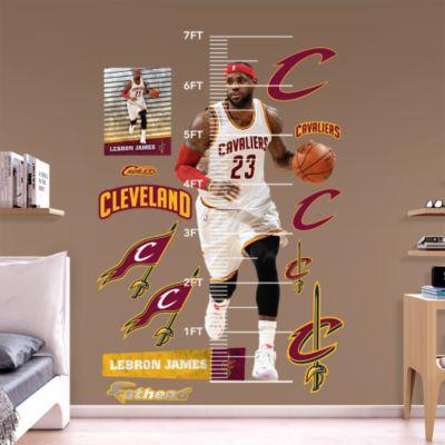USA Basketball Logo Fathead Wall Decal