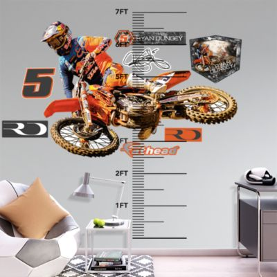 Rochester Rattlers Logo Fathead Wall Decal