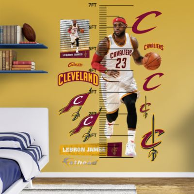 Alshon Jeffery Touchdown Catch Fathead Wall Mural