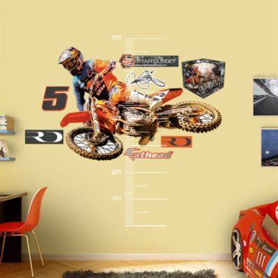 Daytona International Speedway - Blur Fathead Wall Mural