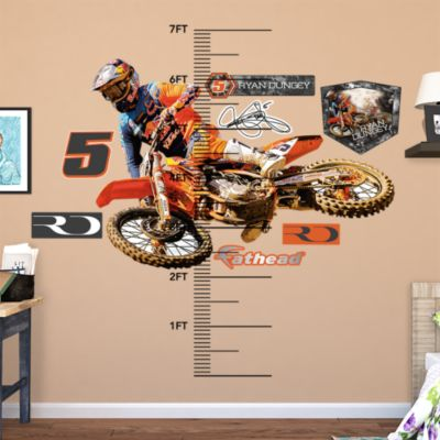 Kelly Clark Fathead Wall Decal