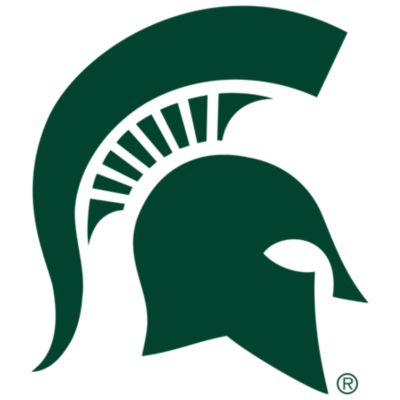 Michigan State Spartans Fathead