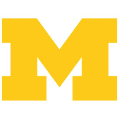 Michigan Wolverines Fathead