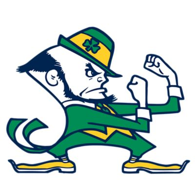 Notre Dame Fighting Irish Fathead