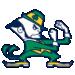 Notre Dame Fighting Irish Fathead