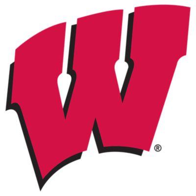Wisconsin Badgers Fathead