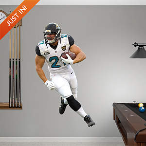 Toby Gerhart Fathead Wall Decal