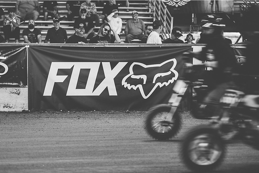 The Fox Stampede
